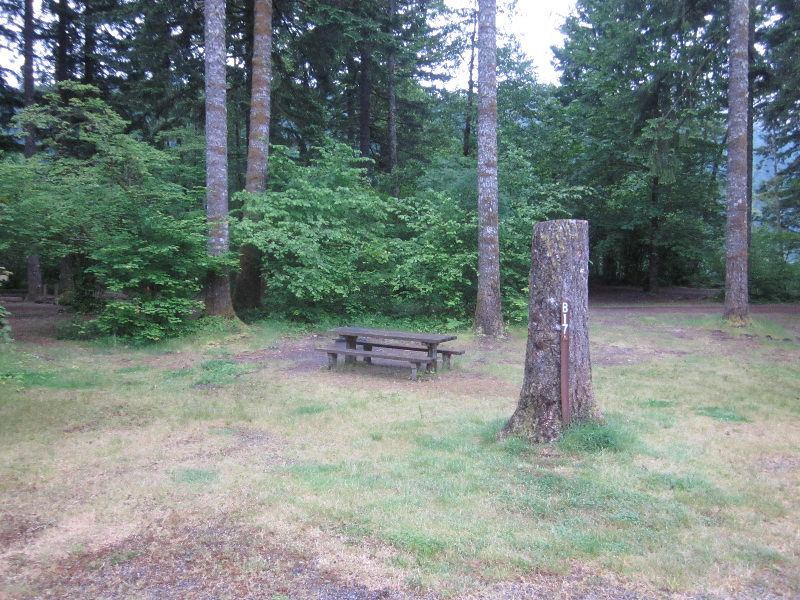 beaver bay cougar women Beaver campground is nestled among large, old maple and sycamore trees, offering a quiet and private family camping experience its location along the wind river provides opportunities for.