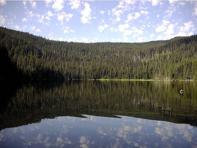 Badger Lake Campground...