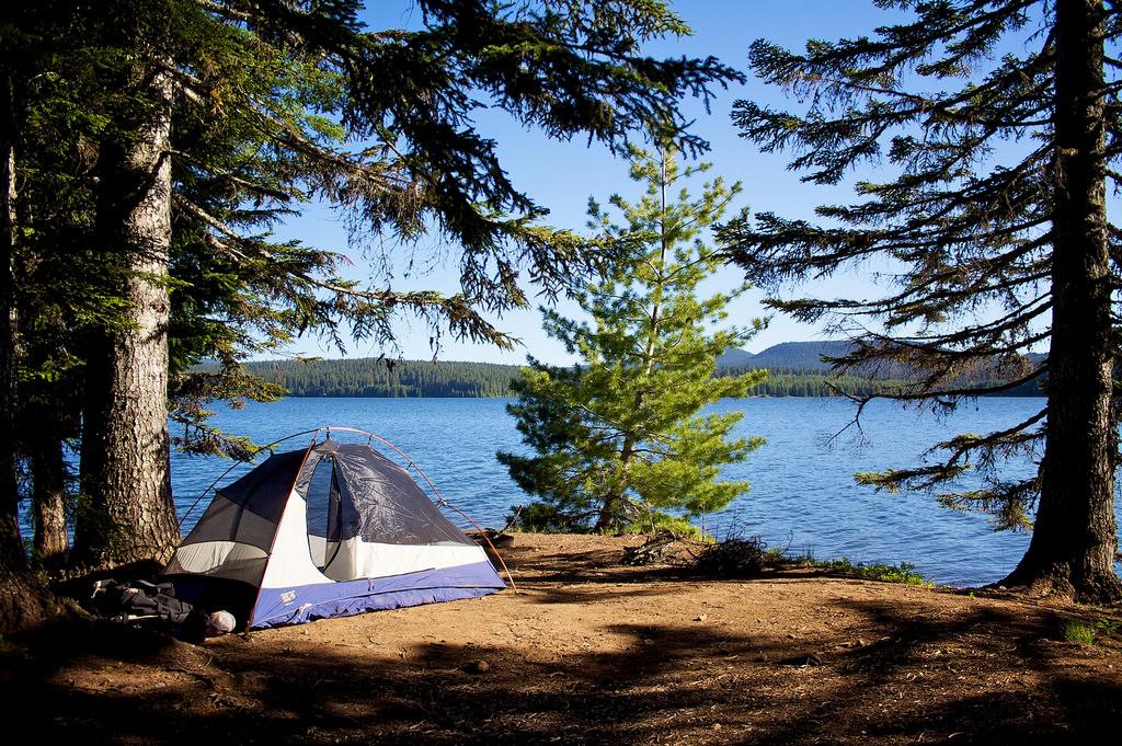 Timothy Lake Oregon Camping Swimming Fishing More