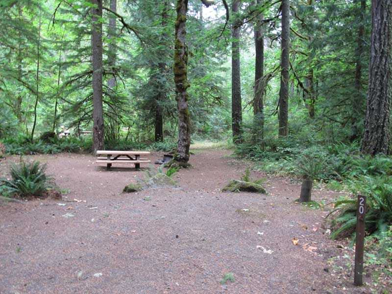 fish creek campground clackamas river oregon