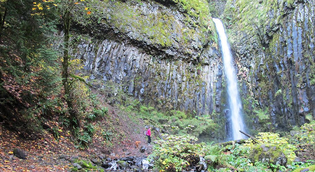 Dry Creek Falls Hike