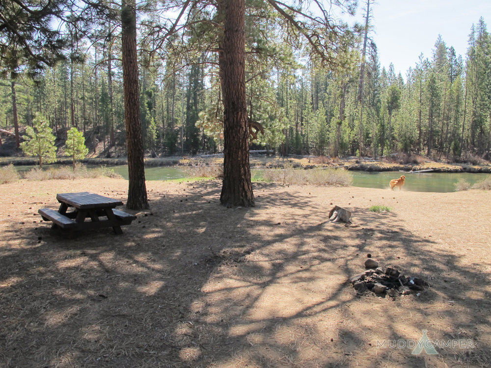 Bull Bend Campground Deschutes River Oregon