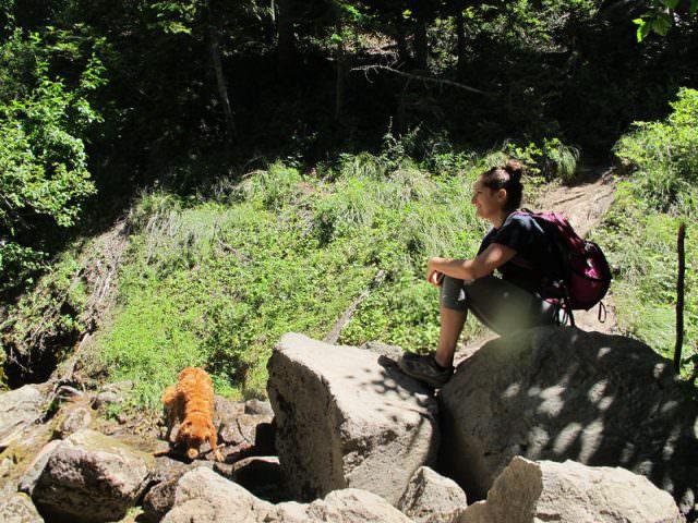 sahale-falls-viewing